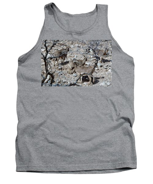 Out Of Africa  Mountain Goats Tank Top