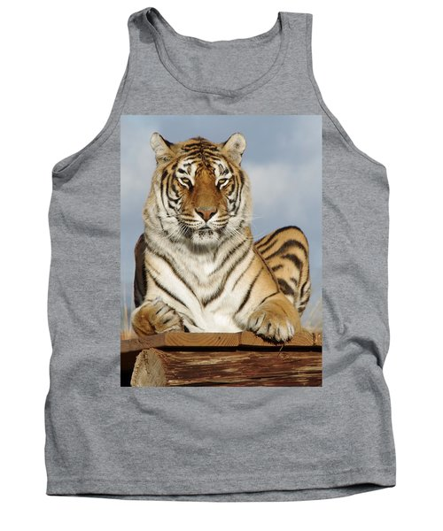 Out Of Africa Tiger 4 Tank Top