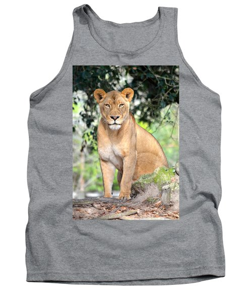 Portrait Of A Proud Lioness Tank Top