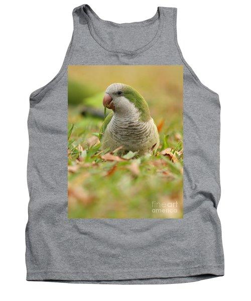 Quaker Parrot #3 Tank Top
