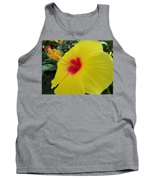 Red Throat With Dew Drops Tank Top