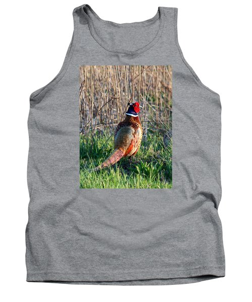 Ring-necked Pheasant Tank Top by George Jones