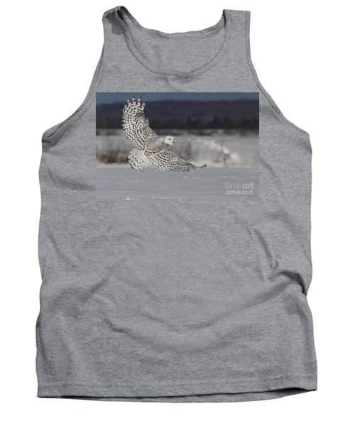 Snowy Owl In Flight Tank Top by Mircea Costina Photography