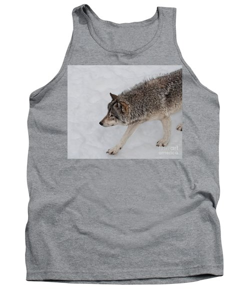 Tank Top featuring the photograph Stalker by Bianca Nadeau