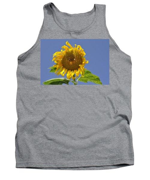 Sunflower At Latrun Tank Top