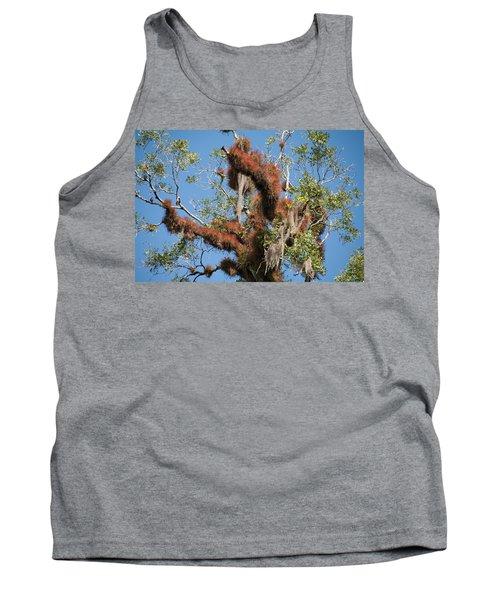 Tikal Furry Tree Closeup Tank Top