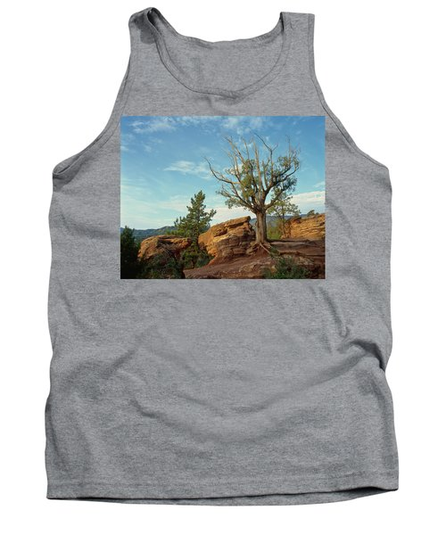 Tree In The Rocks Tank Top