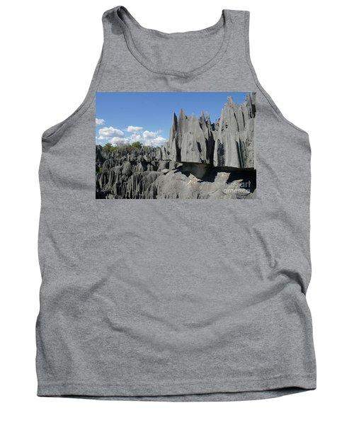 Tank Top featuring the photograph Tsingy De Bemaraha Madagascar 2 by Rudi Prott