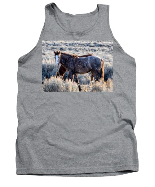 Velvet - Young Colt In Sand Wash Basin Tank Top