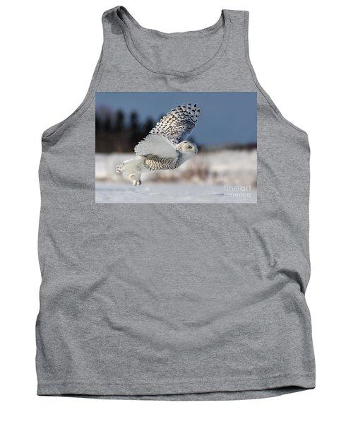 White Angel - Snowy Owl In Flight Tank Top
