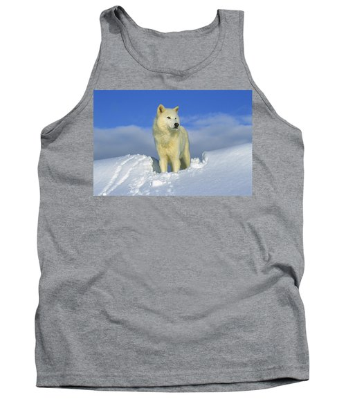 White Wolf In The Snow Idaho Tank Top