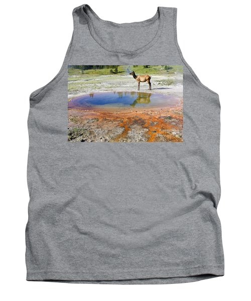 Tank Top featuring the photograph Wild And Free In Yellowstone by Teresa Zieba