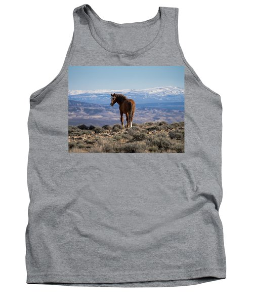 Wild Stallion Of Sand Wash Basin Tank Top by Nadja Rider
