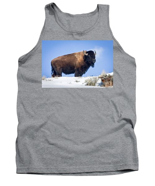 Tank Top featuring the photograph Winter Warrior by Jack Bell