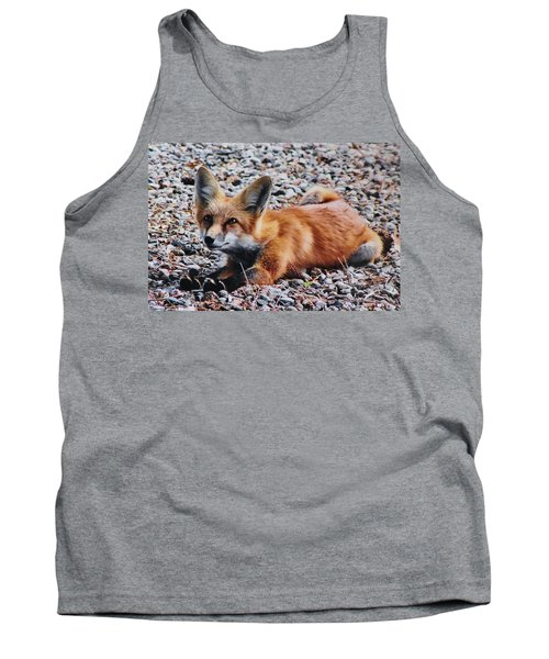 Tank Top featuring the photograph Young Red Fox Watches Squirrel by Diane Alexander