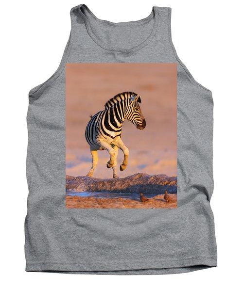 Zebras Jump From Waterhole Tank Top