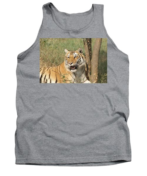 A Tiger Lying Casually But Fully Alert Tank Top