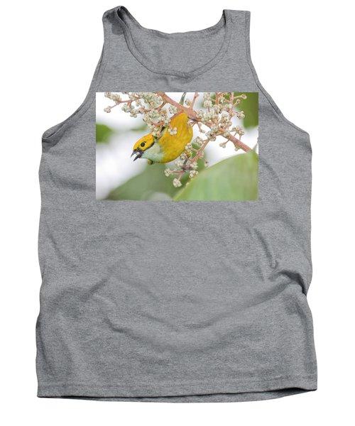 Bird With Berry Tank Top