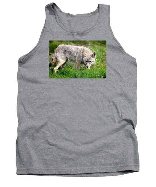 Tank Top featuring the photograph Coyote On The Prowl by Kathy  White