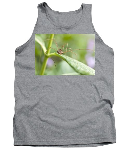 Creepy Crawly Spider Tank Top by Jeannette Hunt