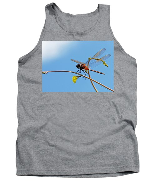 Dragonfly On A Vine Tank Top