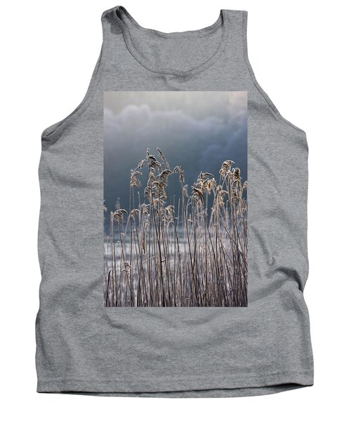 Frozen Reeds At The Shore Of A Lake Tank Top