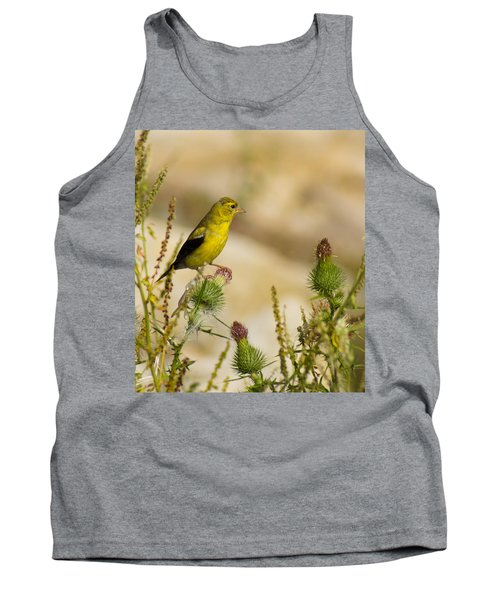 Goldfinch On Lookout Tank Top by Bill Pevlor
