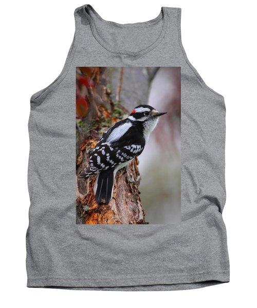 Male Downy Woodpecker Tank Top