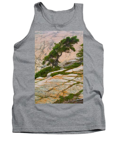 Schoodic Cliffs Tank Top by Brent L Ander