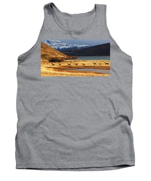 Torres Del Paine National Park Tank Top
