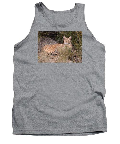 Bobcat At Rest Tank Top