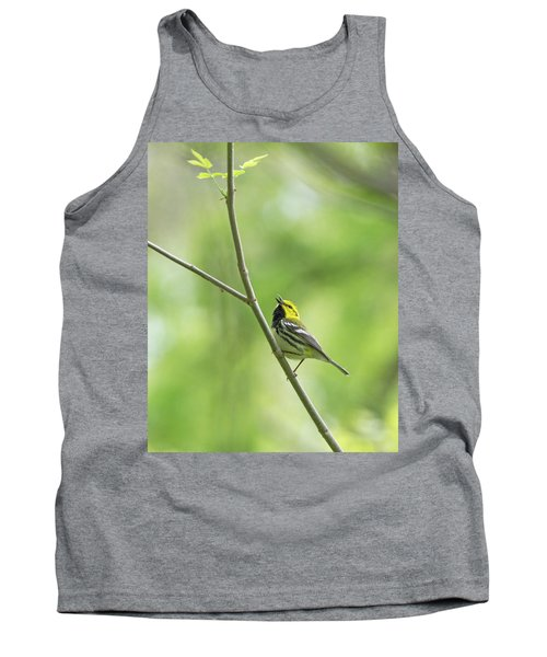 Black-throated Green Warbler Tank Top
