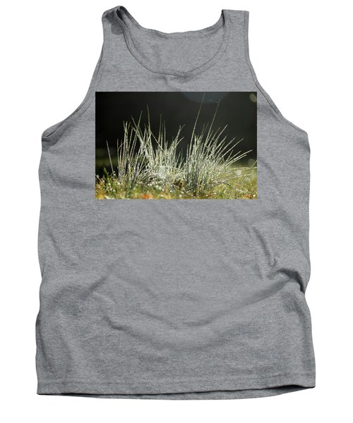 Close-up Of Dew On Grass, In A Sunny, Humid Autumn Morning Tank Top