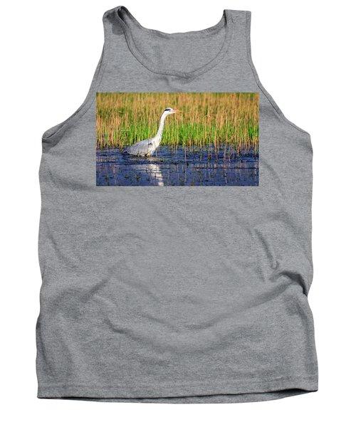 Grey Heron, Ardea Cinerea, In A Pond Tank Top