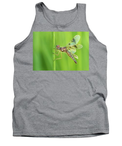Eastern Amberwing Tank Top