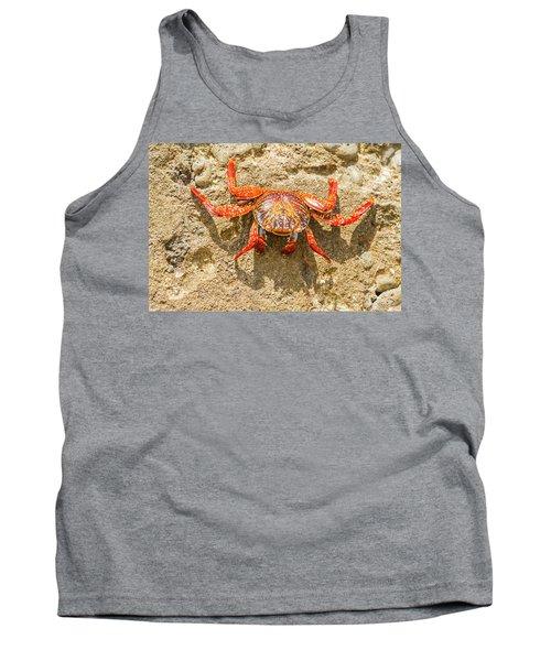 Sally Lightfoot Crab On Galapagos Islands Tank Top