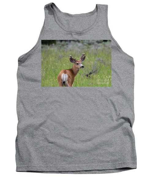 A Deer In Yellowstone National Park  Tank Top
