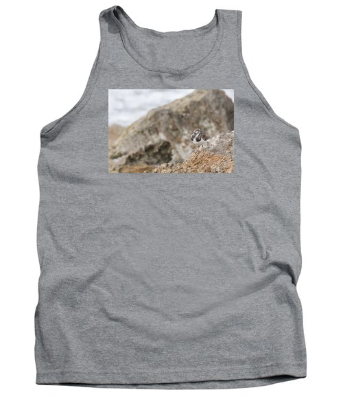 A Ruddy Turnstone Perched On The Rocks Tank Top