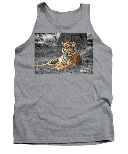 A Tiger Relaxing On A Cool Afternoon II Tank Top