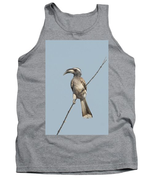 African Grey Hornbill Tockus Nasutus Tank Top by Panoramic Images