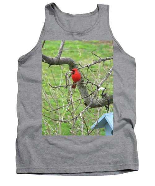 Always With Us -cardinals Tank Top