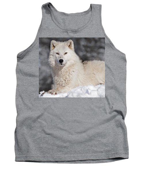 Arctic Wolf... Tank Top