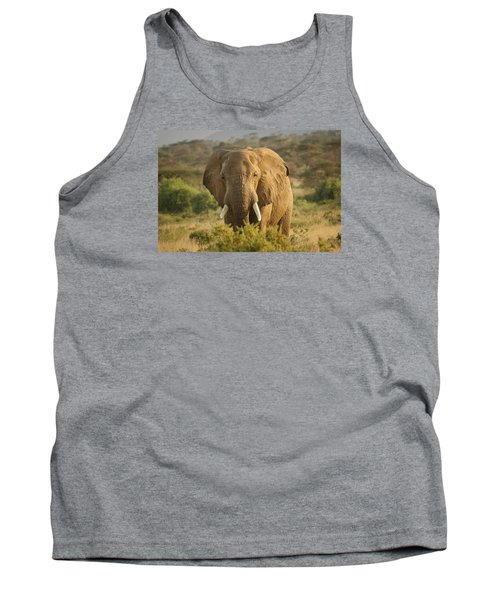 Tank Top featuring the photograph Are You Looking At Me? by Gary Hall