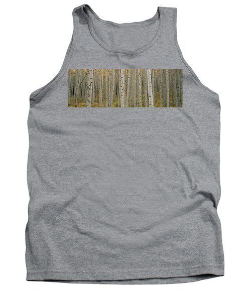 Aspen Grove In Fall, Kebler Pass Tank Top