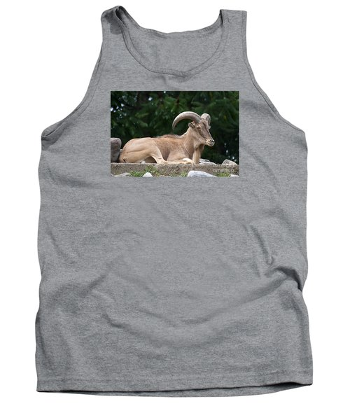 Tank Top featuring the photograph Auodad 20120714_80a by Tina Hopkins