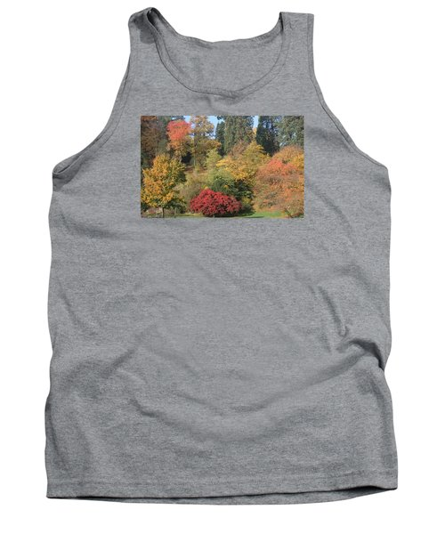 Autumn In Baden Baden Tank Top by Travel Pics
