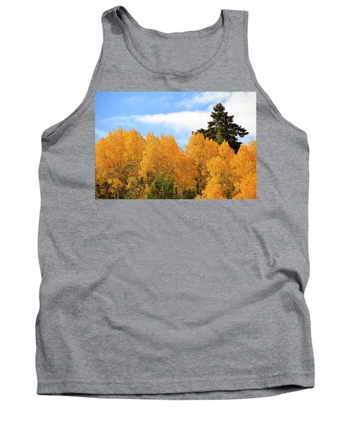 Autumn In The Owyhee Mountains Tank Top
