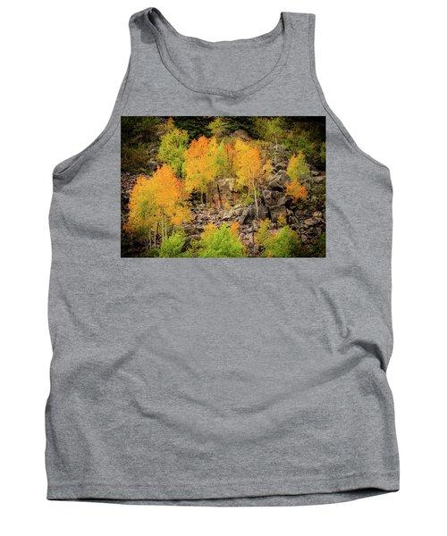 Autumn In The Uinta Mountains Tank Top