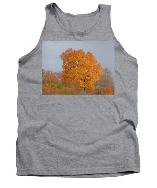 Autumn Tree Tank Top by Donald C Morgan