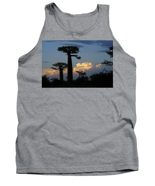 Baobabs And Storm Clouds Tank Top